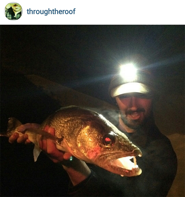 Ice fishing sack dance fattest walleyes ever 1 charge 56 for Ice fishing at night