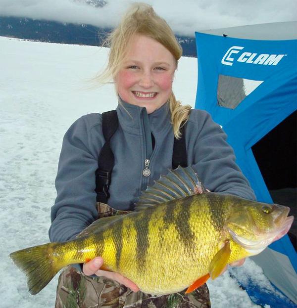Winnipeg godzilla walleye 2 ice perch records how to for Lake winnipeg fishing report