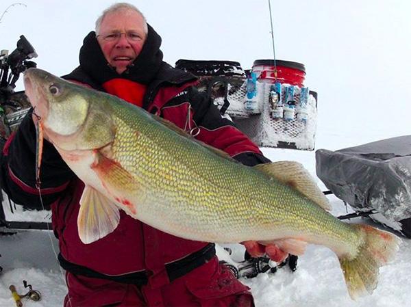 Winnipeg wall rus 33 inch sk eye purple ice pike for Lake winnipeg ice fishing