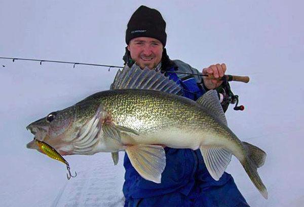 Winnipeg giants explained monster ice pike best mailbox for Lake winnipeg ice fishing