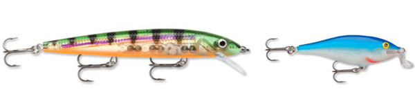 Will Roseberg - Rapala Shallow Shad Rap and Husky Jerk