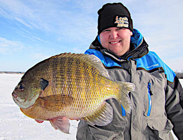 Merp walleye month late ice crappies melons of the week for Ice fishing minnesota