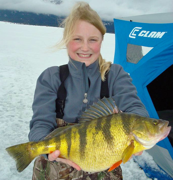 Winnipeg godzilla walleye 2 ice perch records how to for How to ice fish