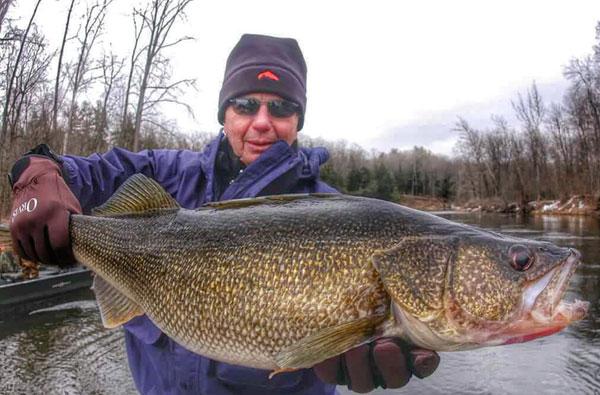 15 lber caught lake winnipeg secrets erie pet walleye for Lake winnipeg ice fishing