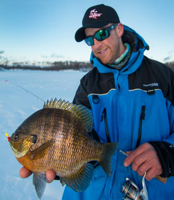 Target walleye the best news and tips on walleye and ice for Ice fishing bluegill